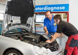 Motormanagement / Systemdiagnose
